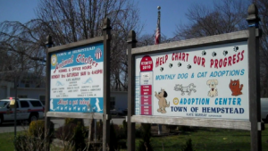 Town of Hempstead Animal Shelter